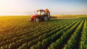 Fiagro: Vale a pena investir em fundos do setor agroindustrial