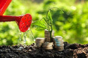 Tipos de Investimentos: Conheça os Principais Ativos Financeiros do Mercado Brasileiro e a Importância de Seguir Uma Estratégia de Investimentos